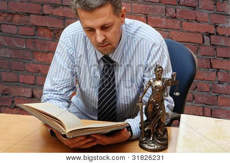 Lawyer reading a book