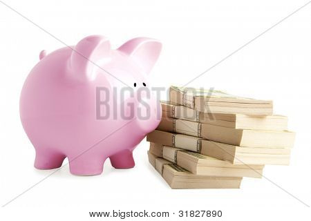 Piggy bank on dollars isolated on white background