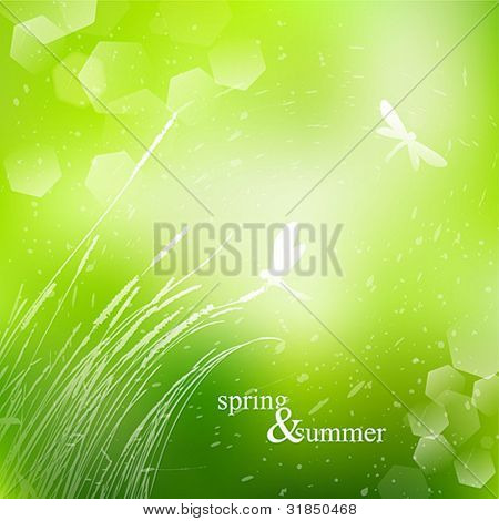 Spring and summer grass watercolor background with bokeh vector