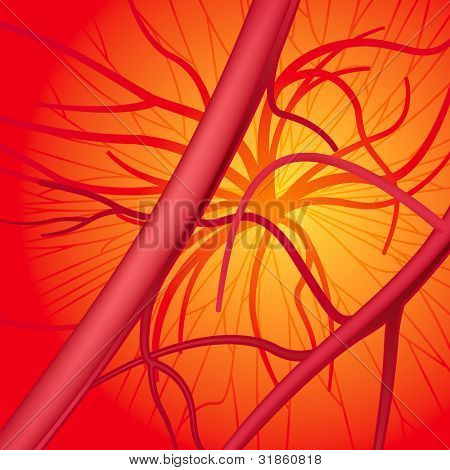 Circulatory system. Rasterized version
