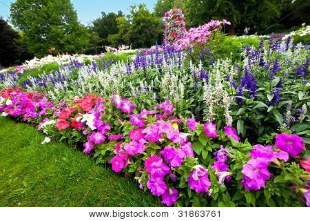 Pretty manicured flower garden with colorful azaleas.
