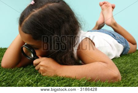Girl Looking At Bugs