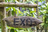 Text Exit On A Wooden Board In A Rainforest Jungle Of Tropical Bali Island, Indonesia. Exit Wooden S poster