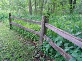 picture of split rail fence  - two sections of split rail fence with green plants and trees in background - JPG