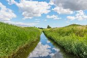 Drainage Channel Near Avno In Denmark On A Sunny Summer Day poster