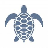Sea Turtle Graphic Icon. Sea Turtle Blue Sign Isolated On White Background. Vector Illustration poster