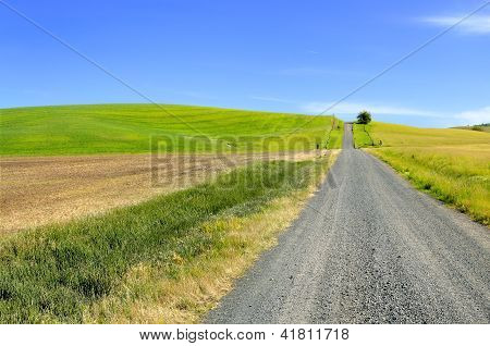 Farm Road and Rolling Hills