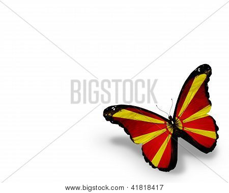 Macedonian Flag Butterfly, Isolated On White Background