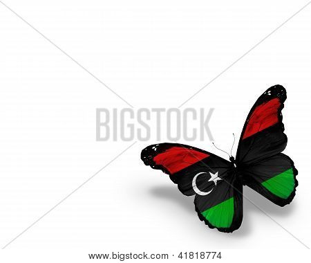 Libyan Flag Butterfly, Isolated On White Background