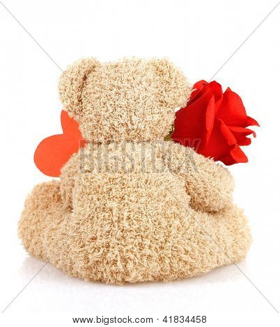 Picture of brown furry Teddy bear with red beautiful rose and heart-shaped greeting card isolated on white background, back side of cute soft toy, Valentine day holiday, romantic gift, love concept