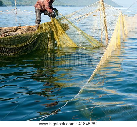 Trap Fishing