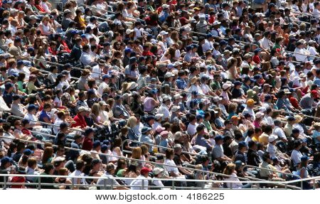 Sporting Crowd