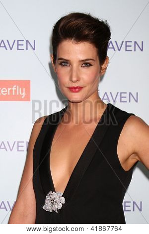 LOS ANGELES - FEB 5:  Cobie Smulders arrives at the 'Safe Haven' Premiere at the TCL Chinese Theater on February 5, 2013 in Los Angeles, CA