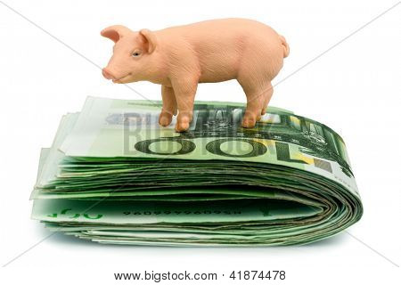 a pig stands on euro banknotes money. rising feed costs in agriculture. diminishing returns for pork
