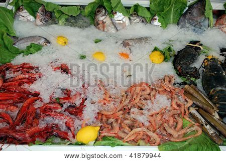 Seafood in chiller cabinet, Spain.