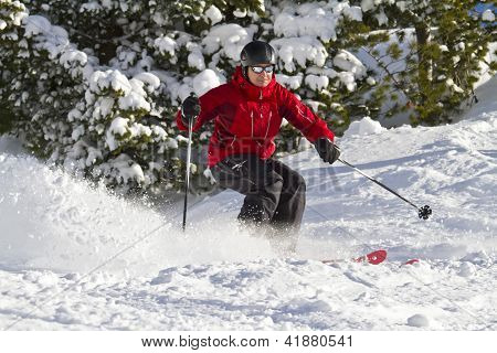 Male Skiing Forest