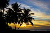 picture of greater antilles  - sunset over Caribbean Sea - JPG