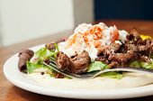 stock photo of gyro  - Plate of Mediterranean style lamb or beef gyro - JPG