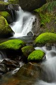 pic of humidity  - A peaceful waterfall among mossy rocks located in the wilderness of Oregon - JPG