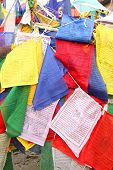 pic of darjeeling  - Buddhist prayer flags in Darjeeling - JPG