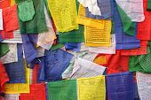 stock photo of darjeeling  - Buddhist prayer flags in Darjeeling - JPG