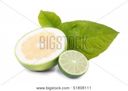 Fresh citrus fruit with a halved juicy lemon and lime with their tangy acidic pulp rich in vitamin c used as a flavoring and garnish in cooking, resting on fresh green leaves