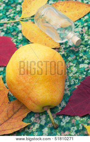 Pear autumn