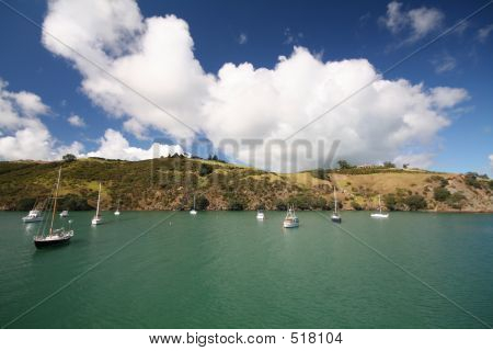 Sailboats At Waiheke Island