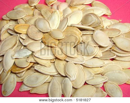 Pumpkin Sunflower Seeds Cucurbita Pepo