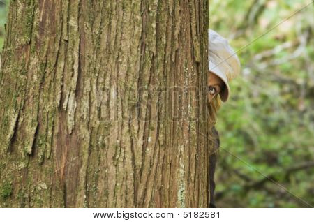 Woman Peers Around Tree
