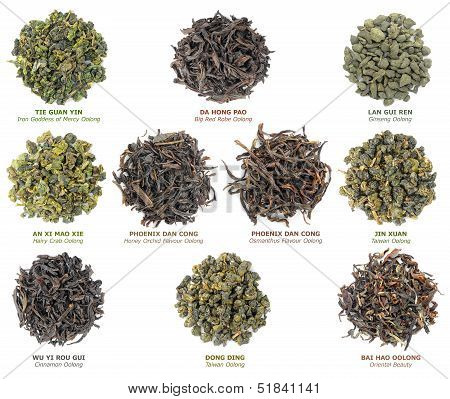 Chinese Oolong Tea Collection