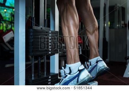 Sporty Legs Calf