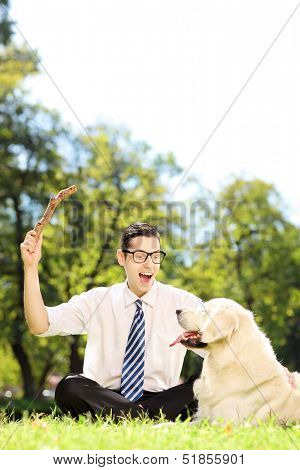 Guy with tie and glasses seated on a green grass playing with labrador retriver in a park