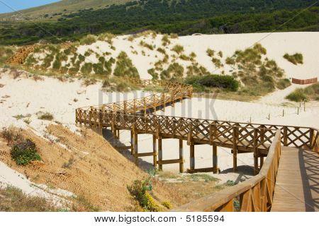 Bridge Through Dune