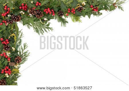 Christmas background floral border with natural holly, mistletoe, ivy, cedar leaf sprigs and pine cones over white.