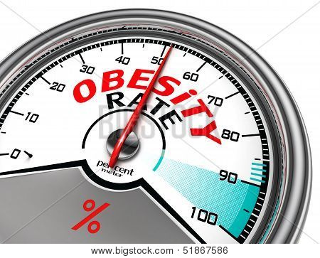 Obesity Rate Conceptual Meter