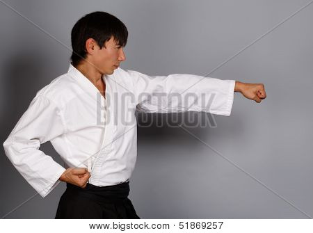Martial Arts Attack