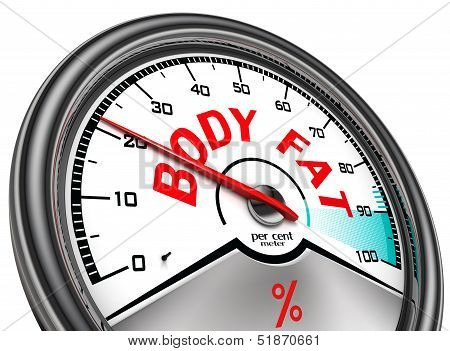 Body Fat Conceptual Meter