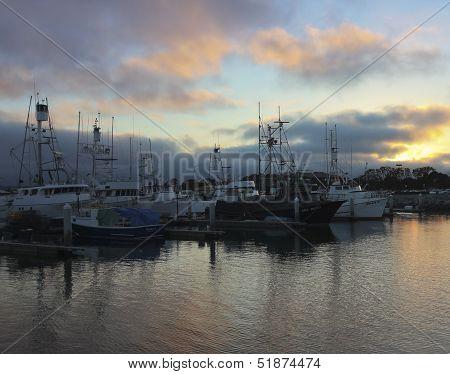 A Tuna Harbor At Sunset Shot, San Diego
