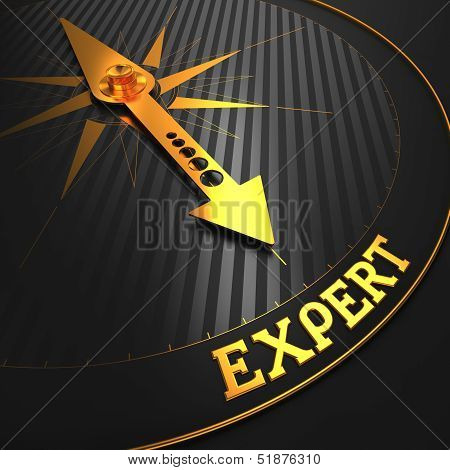 Expert. Business Background.