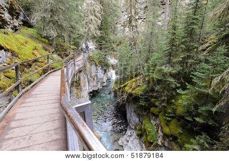 Johnston Canyon Lower Falls Walkway