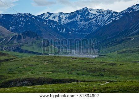 Trails in Denali National Park