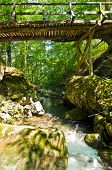 Wooden bridge over the creek at Tara mountain and national park poster