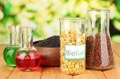 image of biodiesel  - Conceptual photo of bio fuel - JPG