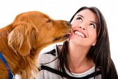stock photo of licking  - Cute dog kissing a woman  - JPG