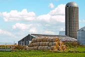 picture of mohawk  - farm in the mohawk valley new york
