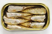 pic of oil can  - an open can of sardines on a white background - JPG