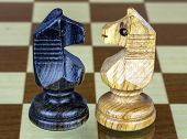 image of cunning  - two chess horse faced white and black - JPG