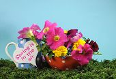 stock photo of petunia  - Beautiful Springtime bright and colorful floral display on green grass with petunia marigold and rose Spring flowers and polka dot cup against a cheerful blue background - JPG