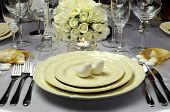 picture of salt shaker  - Close up of detail on wedding breakfast dining table setting with dove shape salt and pepper shakers on beautiful china plates with white roses bouquet in background - JPG